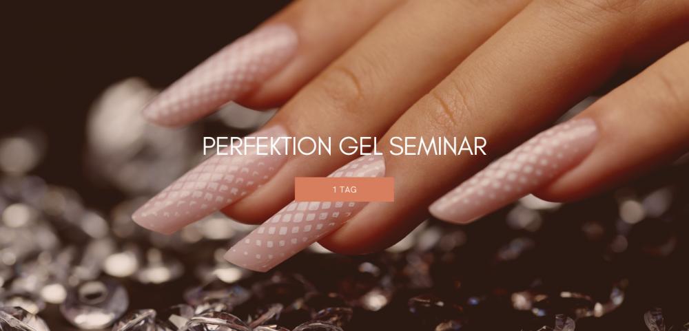 Perfektion - Gel Seminar - 1 Tag (inkl. Starter Kit)